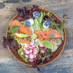 The Best Salmon Tarragon Salad Recipes We Can Find